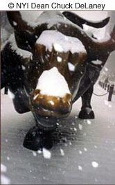 snow winter photography